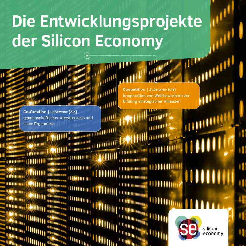 Broschüre Entwicjlungsprojekte der Silicon Economy